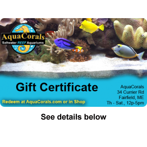 gift-certificate-product-300px